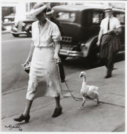 Ruth Jacobi: Spaziergängerin mit Gans, New York, 1928