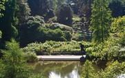 Grün in der Stadt Essen. Mehr als Parks und Gärten