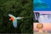 GREENPEACE präsentiert: Naturwunder Erde – eine Multimedia-Fotoshow mit Markus Mauthe